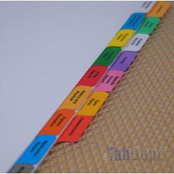 Multicolour Dialysis Tabs (Simple Set)