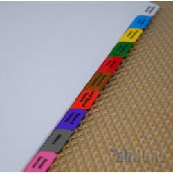 Multicolour Long-Term Care Tabs (Simple)